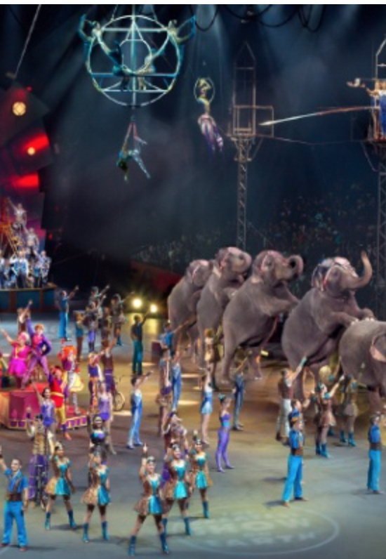 Ringling brothers discount coupons